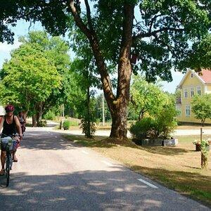 Small square cykla